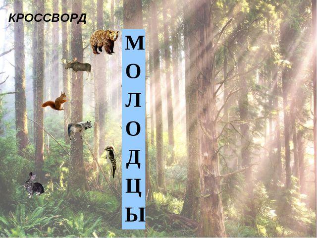 КРОССВОРД М О Л О Д Ц...