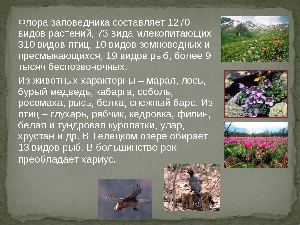 Флора заповедника составляет 1270 видов растений, 73 вида млекопитающих 310 в...