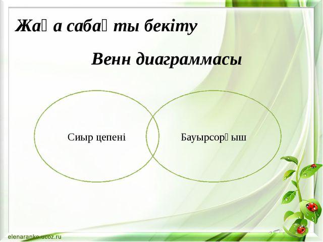 Венн диаграммасы Сиыр цепені Бауырсорғыш Жаңа сабақты бекіту