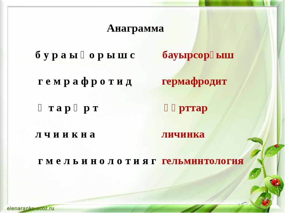 Анаграмма б у р а ы ғ о р ы ш с бауырсорғыш г е м р а ф р о т и д гермафроди...