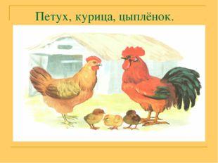 Петух, курица, цыплёнок.