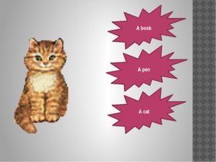 A book A cat A pen
