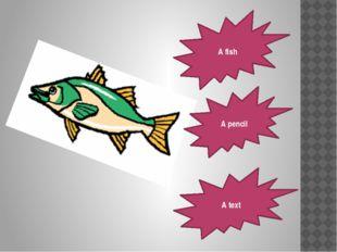 A fish A pencil A text