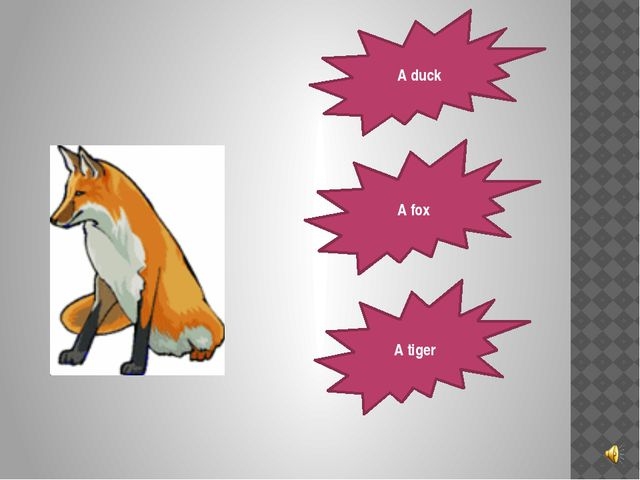 A duck A fox A tiger