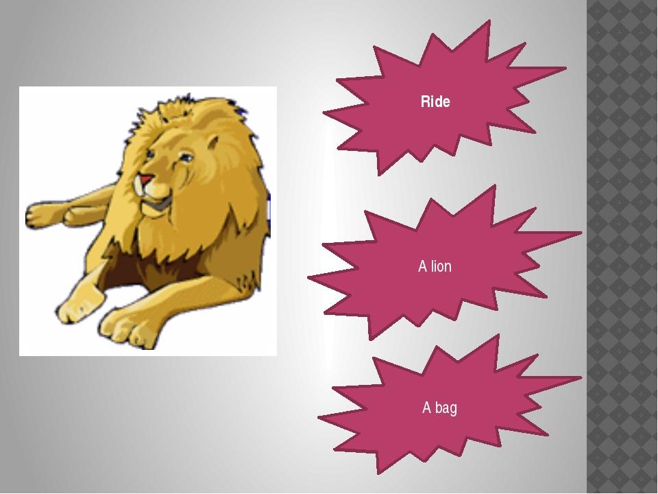 Ride A lion A bag