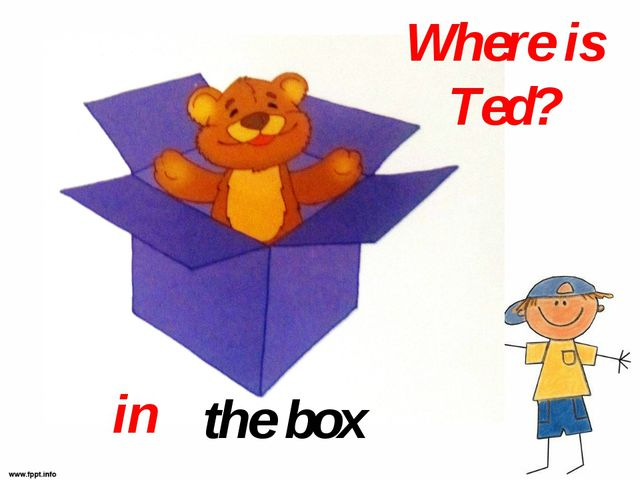 Where is Ted? the box in