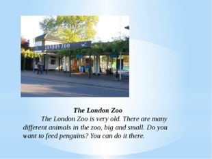 The London Zoo The London Zoo is very old. There are many different animals
