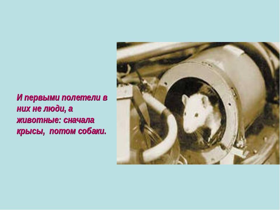 И первыми полетели в них не люди, а животные: сначала крысы, потом собаки.