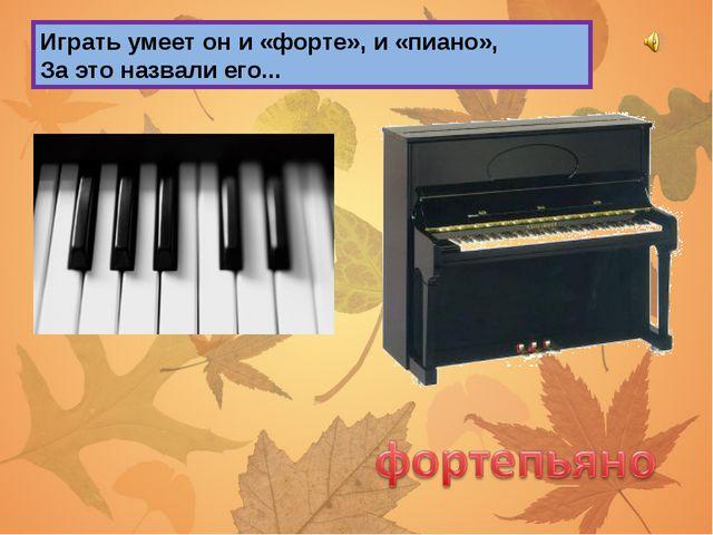 Играть умеет он и «форте», и «пиано», За это назвали его...
