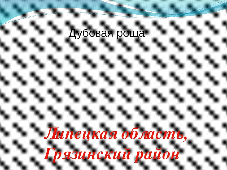 Дубовая роща Липецкая область, Грязинский район
