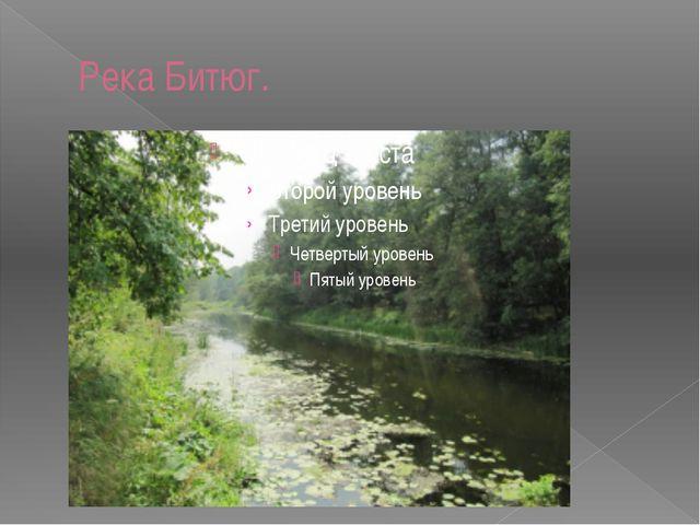 Река Битюг.