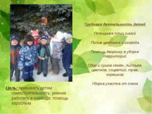 Цель: прививать детям самостоятельность, умение работать в команде, помощь вз