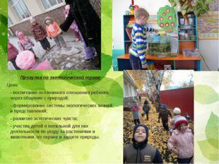 Прогулка по экологической тропе Цели: - воспитание осознанного отношения ребе