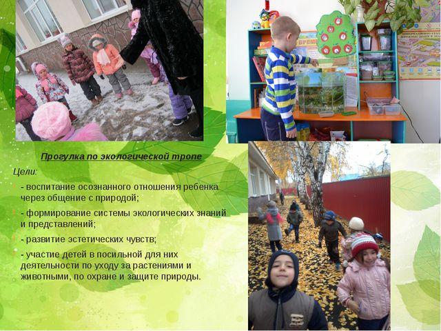 Прогулка по экологической тропе Цели: - воспитание осознанного отношения ребе...