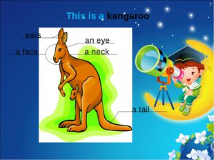 This is a kangaroo ears a face an eye a neck a tail