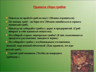 Никогда не пробуй гриб на вкус! (Можно отравиться). Не знаешь гриб – не бери