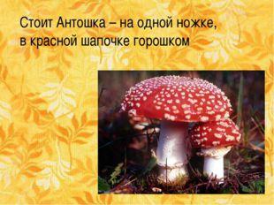 Стоит Антошка – на одной ножке, в красной шапочке горошком