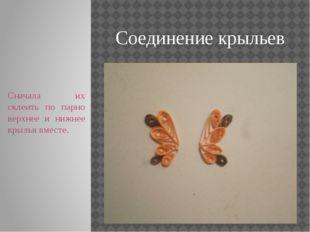 Соединение крыльев Сначала их склеить по парно верхнее и нижнее крылья вместе.