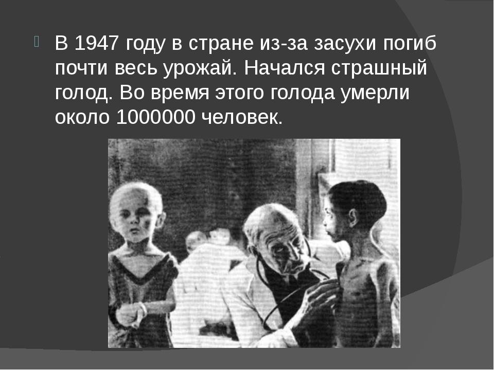 В 1947 году в стране из-за засухи погиб почти весь урожай. Начался страшный г...