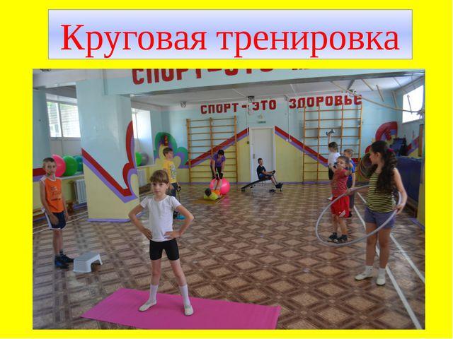 Круговая тренировка