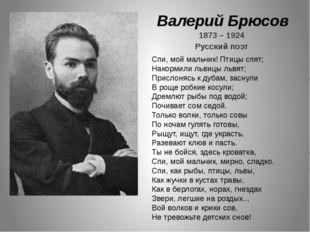 Валерий Брюсов 1873 – 1924 Русский поэт Спи, мой мальчик! Птицы спят; Накорми