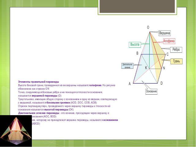 Элементы правильной пирамиды Высота боковой грани, проведенная из ее вершины...