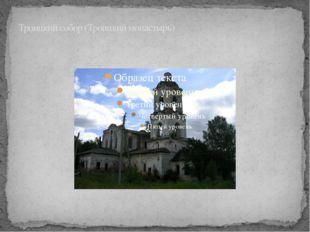 Троицкий собор (Троицкий монастырь)