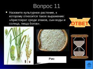 Вопрос 11 Назовите культурное растение, к которому относится такое выражение: