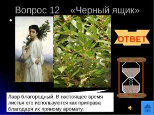 Вопрос 12 «Черный ящик» В «черном ящике» лежит ветка растения с несъедобными