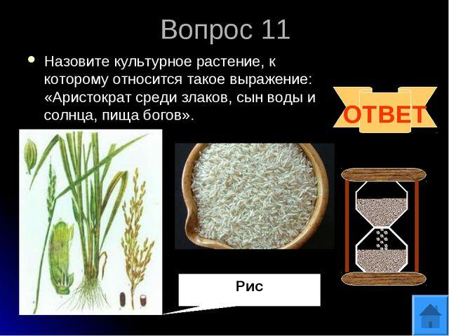 Вопрос 11 Назовите культурное растение, к которому относится такое выражение:...