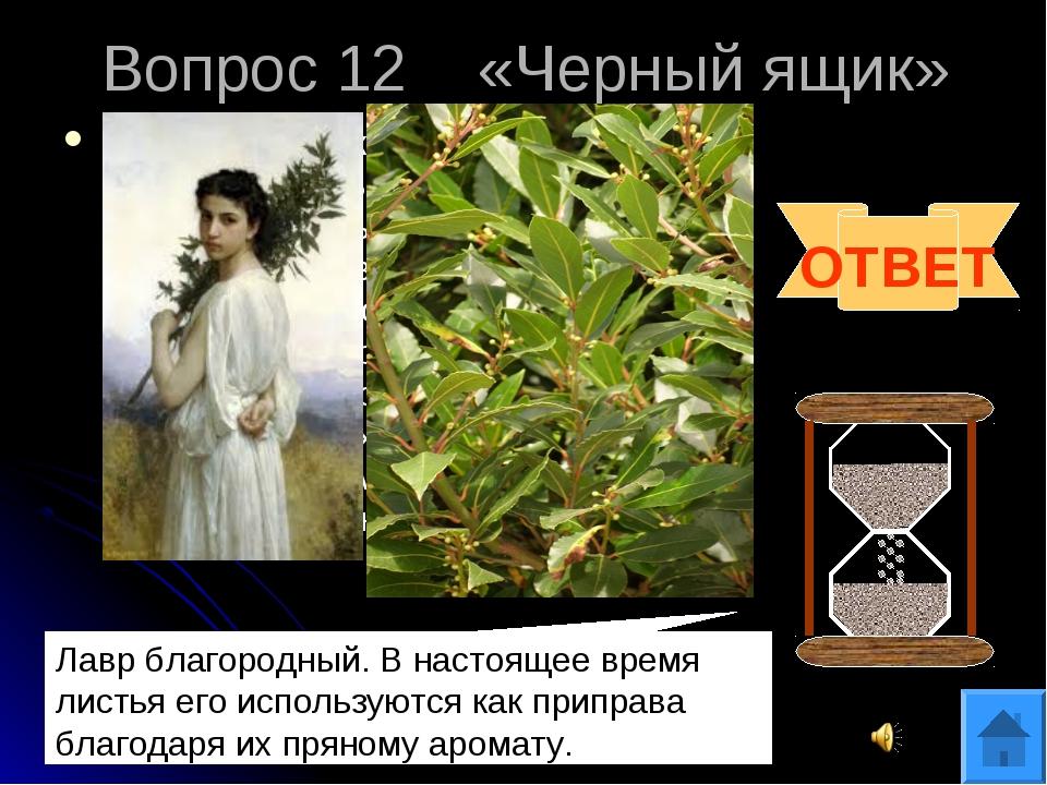 Вопрос 12 «Черный ящик» В «черном ящике» лежит ветка растения с несъедобными...
