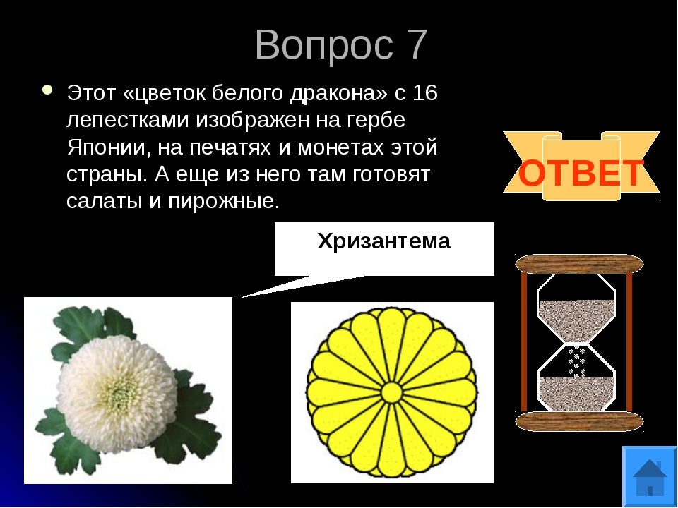 Вопрос 7 Этот «цветок белого дракона» с 16 лепестками изображен на гербе Япон...
