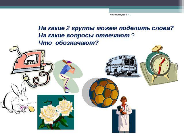 Чермошенцева Е.А.. На какие 2 группы можем поделить слова? На какие вопросы о...