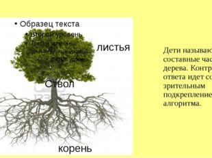 Дети называют составные части дерева. Контроль ответа идет со зрительным подк