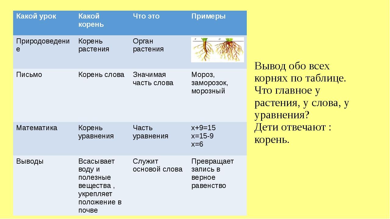 Вывод обо всех корнях по таблице. Что главное у растения, у слова, у уравнени...