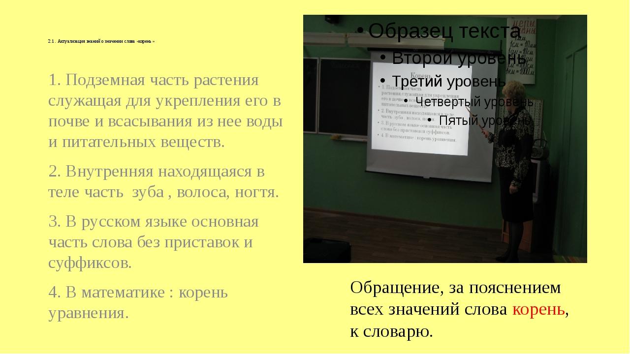 2.1 . Актуализация знаний о значении слова «корень» 1. Подземная часть расте...