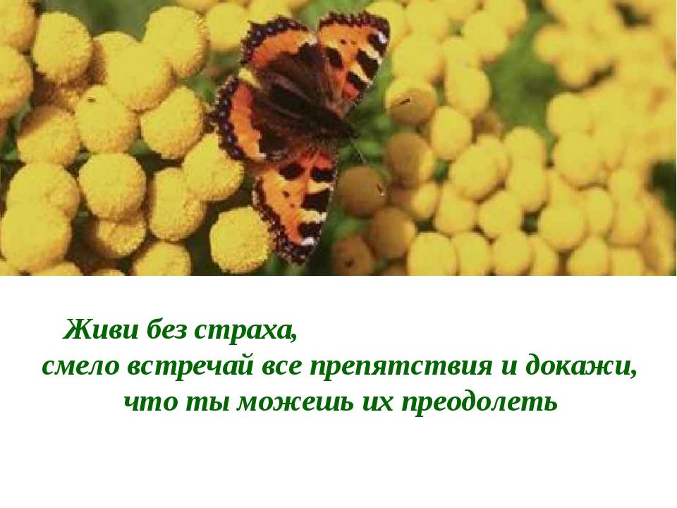Живи без страха, смело встречай все препятствия и докажи, что ты можешь их пр...