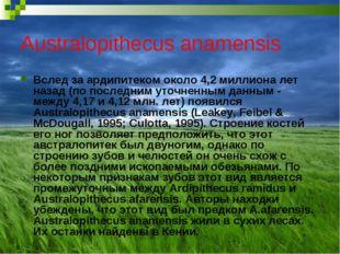 Australopithecus anamensis Вслед за ардипитеком около 4,2 миллиона лет назад