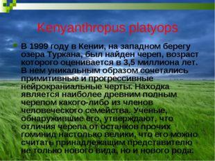Kenyanthropus platyops В 1999 году в Кении, на западном берегу озера Туркана,