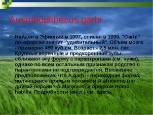 """Australopithecus garhi Найден в Эфиопии в 1997, описан в 1999. """"Garhi"""" по-афа"""