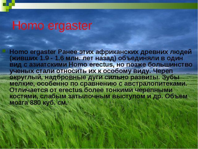 Homo ergaster Homo ergaster Ранее этих африканских древних людей (живших 1.9...
