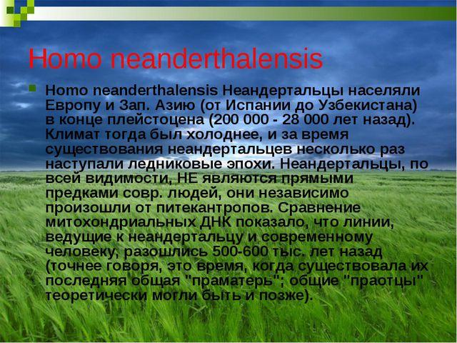 Homo neanderthalensis Homo neanderthalensis Неандертальцы населяли Европу и З...