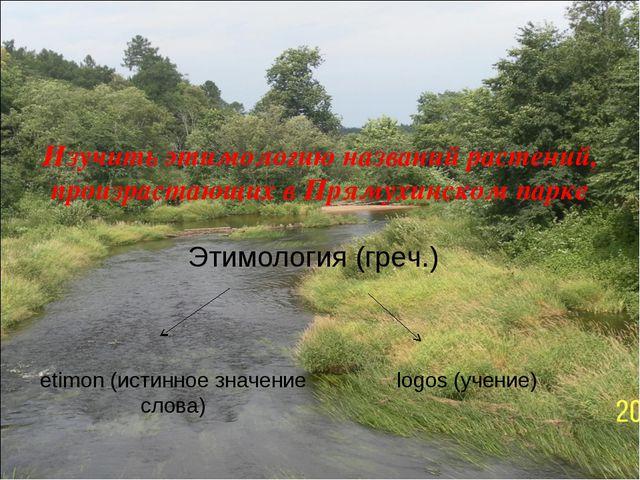 Цель работы - Изучить этимологию названий растений, произрастающих в Прямухин...