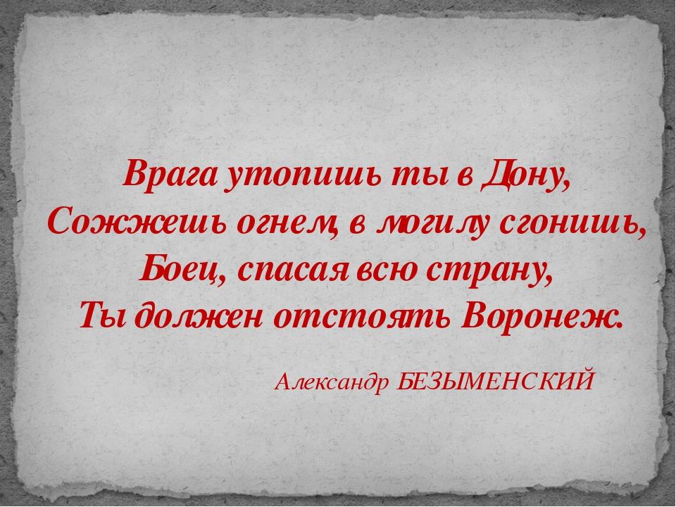 Врага утопишь ты в Дону, Сожжешь огнем, в могилу сгонишь, Боец, спасая всю ст...