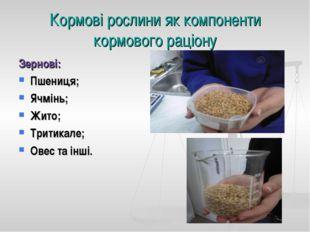Кормові рослини як компоненти кормового раціону Зернові: Пшениця; Ячмінь; Жит