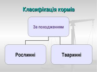 Класифікація кормів