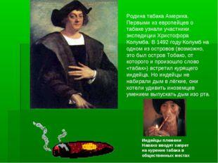 Родина табака Америка. Первыми из европейцев о табаке узнали участники экспед