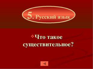 Что такое существительное? 5. Русский язык