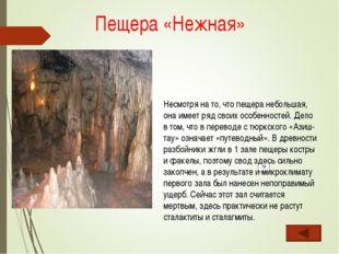 Несмотря на то, что пещера небольшая, она имеет ряд своих особенностей. Дело
