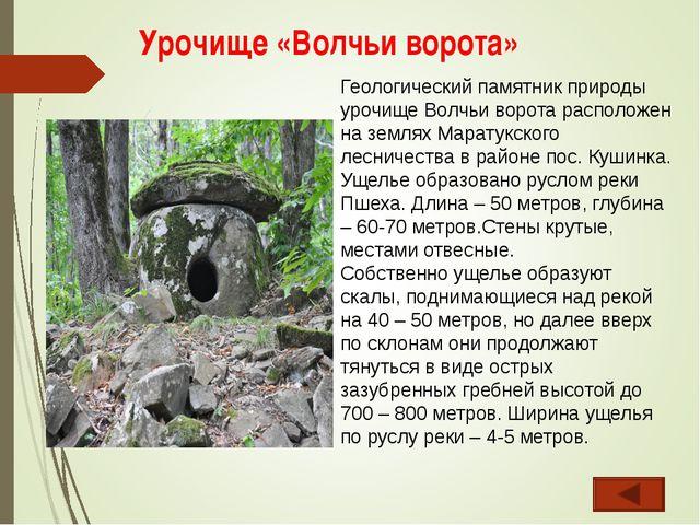 Урочище «Волчьи ворота» Геологический памятник природы урочище Волчьи ворота...